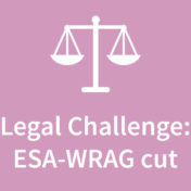Help us legally challenge ESA WRAG cut