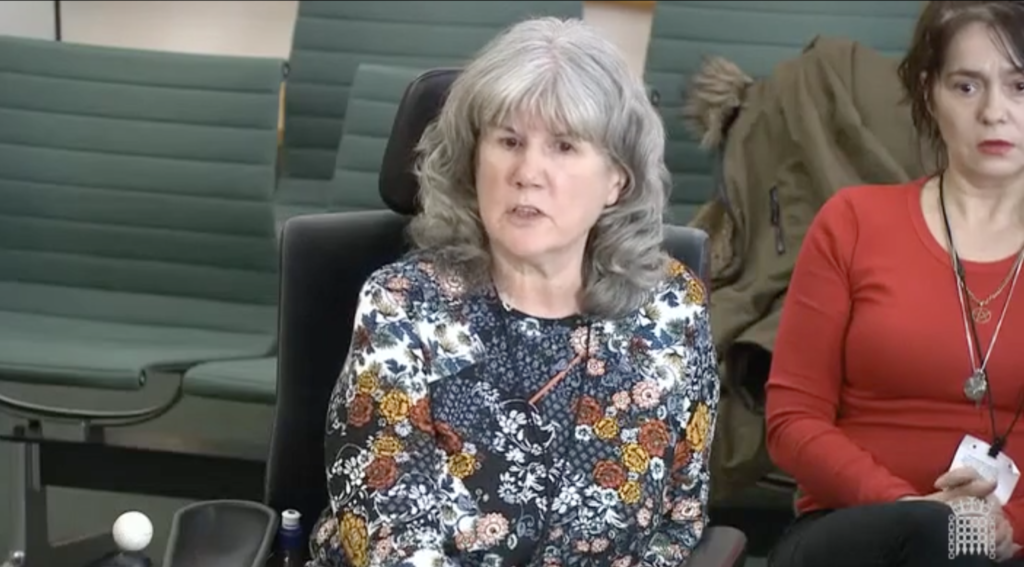 Anne Novis giving evidence to the house of commons petitions committee
