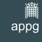 All Party Parliamentary Group on Coronavirus – Inclusion London's response